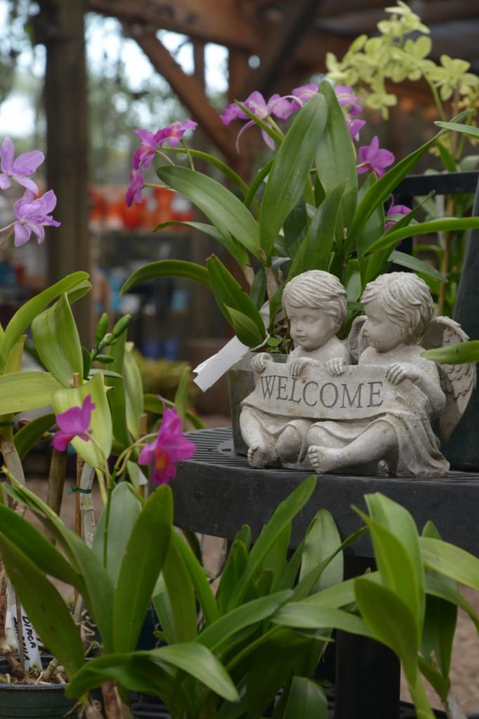 Garden_Shop_006