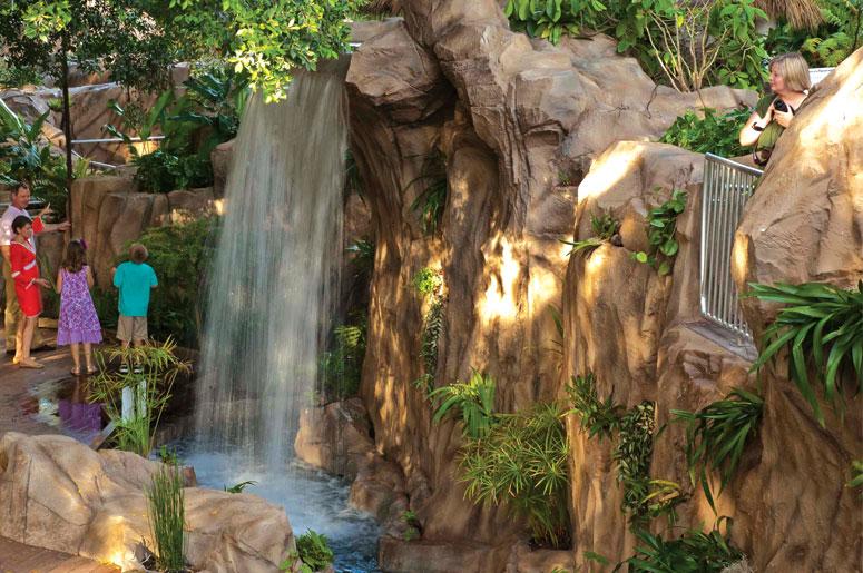http://selbyorg.c.presscdn.com/wp-content/uploads/Rainforest-garden-waterfall.jpg