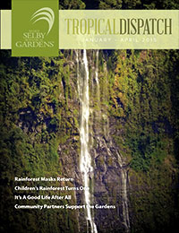 http://selbyorg.c.presscdn.com/wp-content/uploads/Tropical-Dispatch-Jan15-cover.jpg