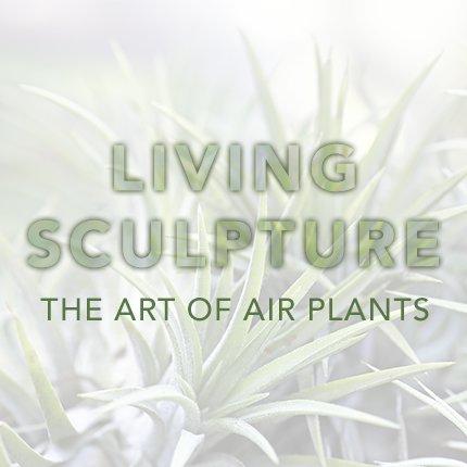 http://selbyorg.c.presscdn.com/wp-content/uploads/living-sculpture1.jpg